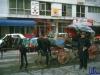 askania1984_047