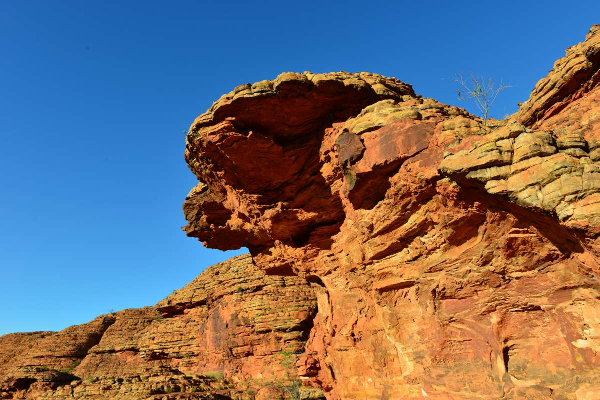 australia_kings_canyon_0031