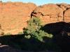 australia_kings_canyon_0071