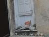 corsica_0046
