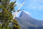 cradle_mountain_007