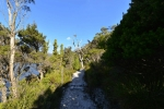 cradle_mountain_014