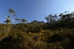 cradle_mountain_015
