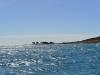 flinders_islands_0036
