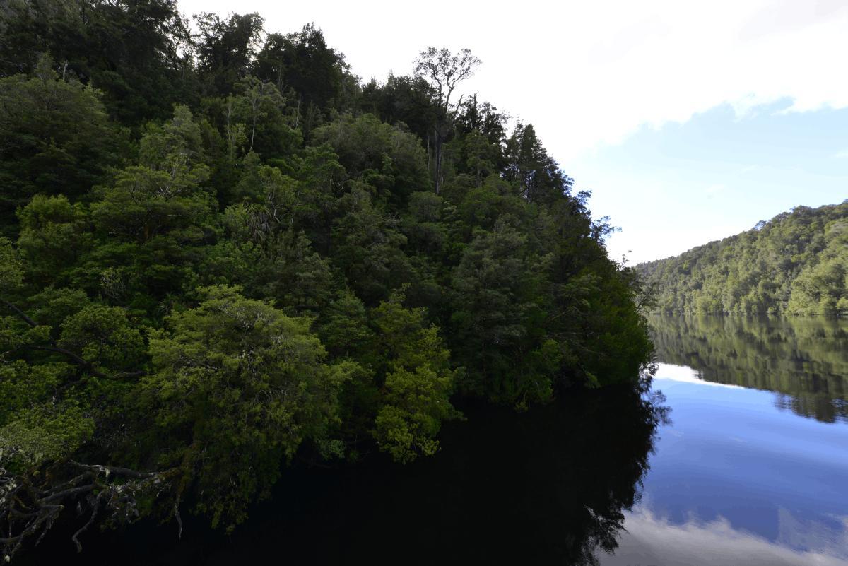 strahan_gordon_river_tour_022