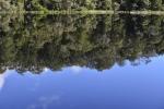 strahan_gordon_river_tour_019