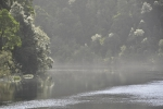 strahan_gordon_river_tour_024