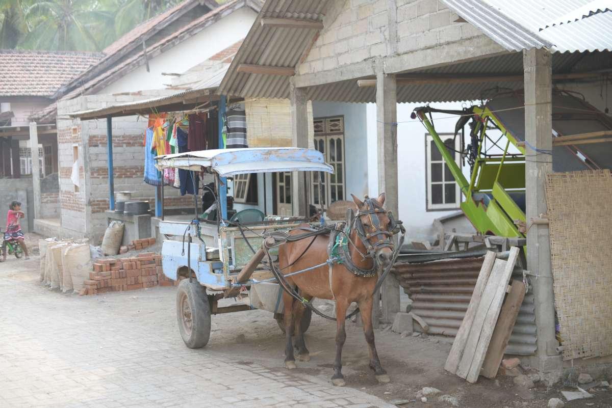 lombok_medana_0041