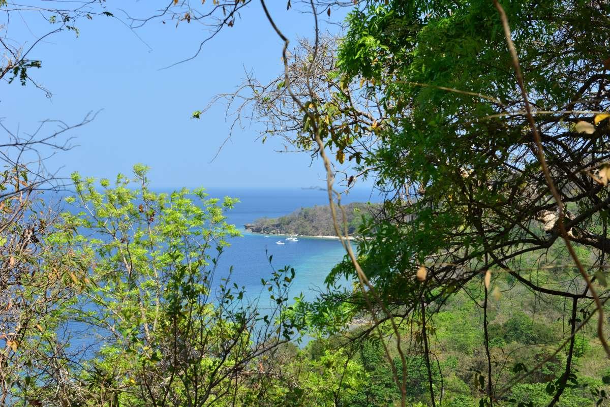 mojo_island_0036