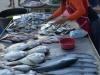nai_yang_beach_market_0021