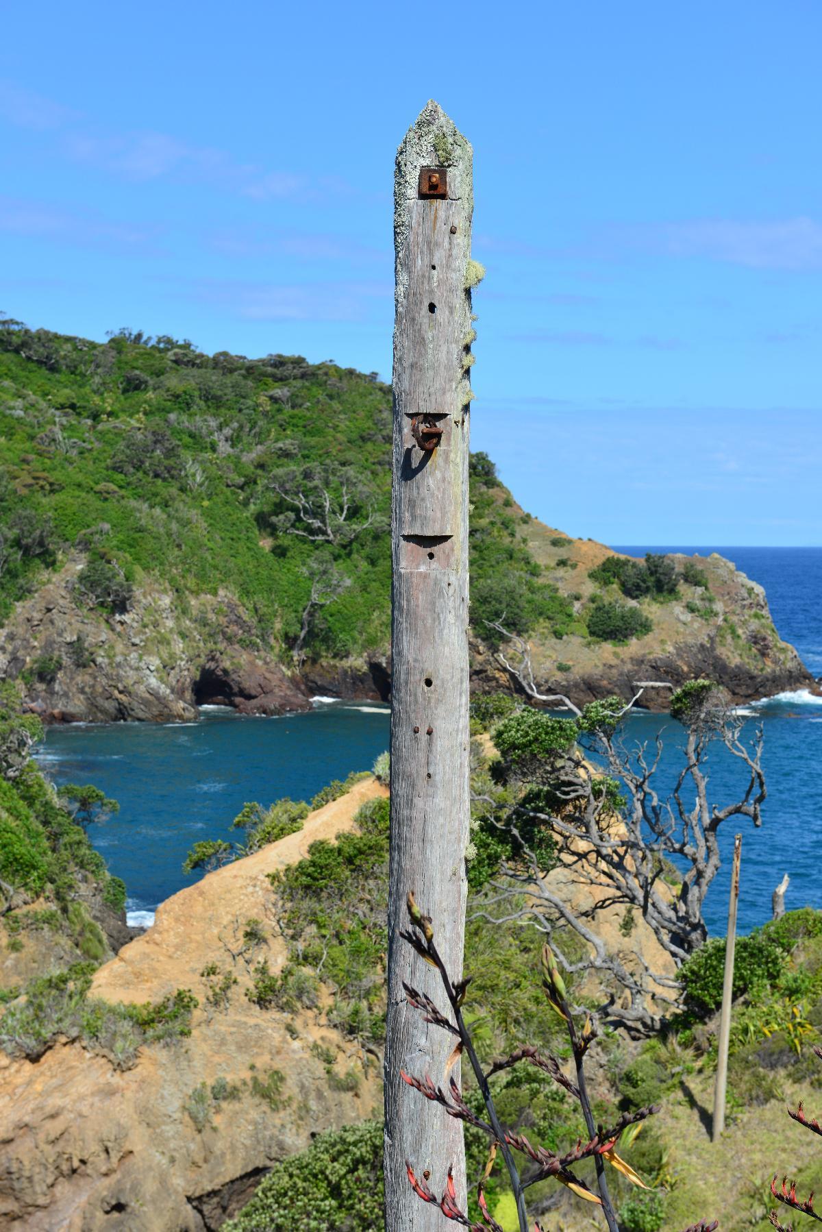 newzealand_2_0016