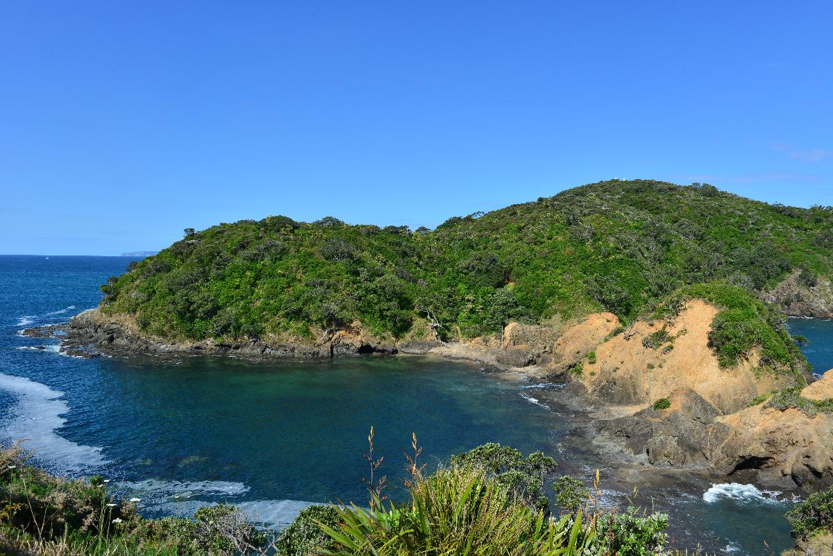 newzealand_2_0021