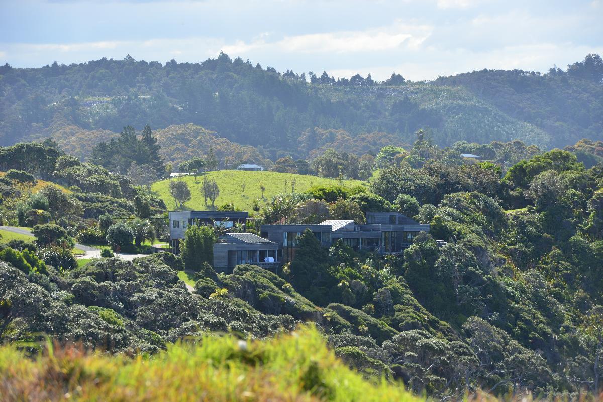 newzealand_2_0041