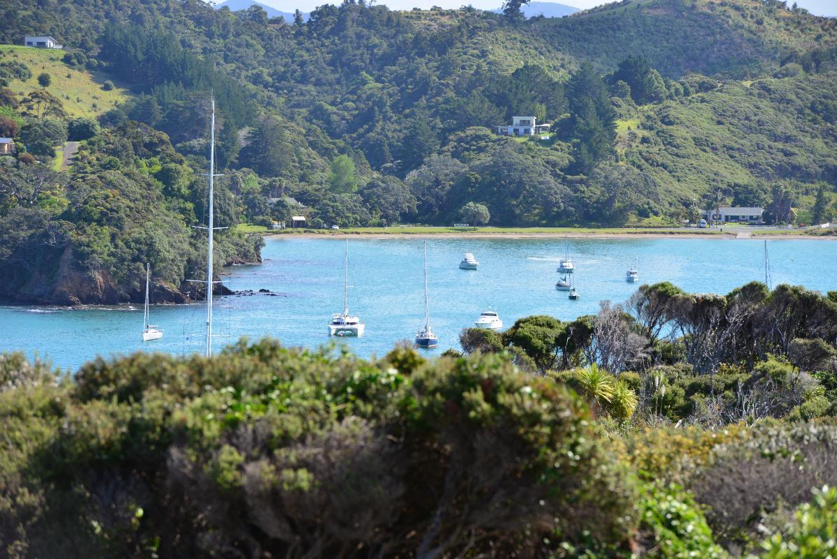 newzealand_2_0061