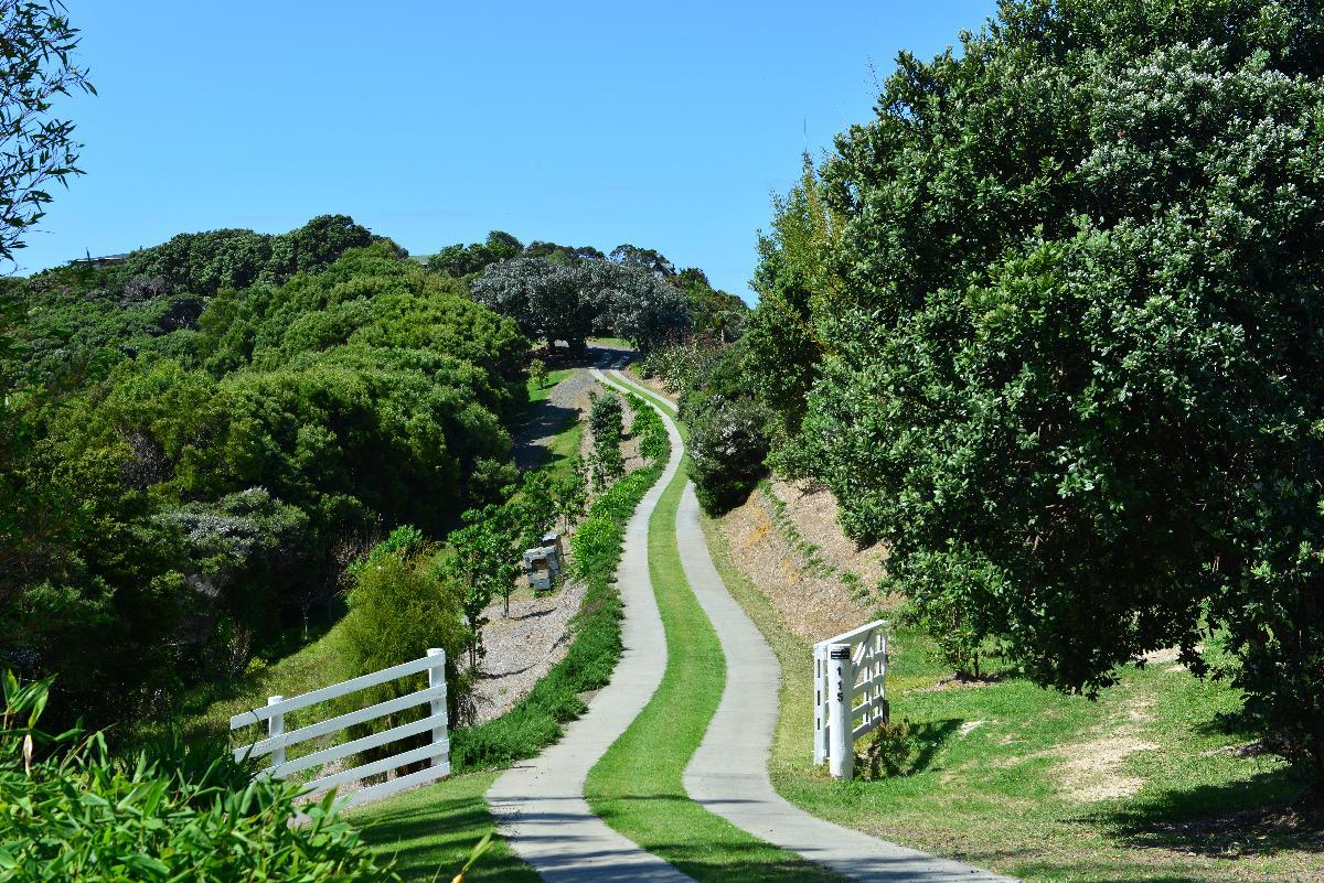 newzealand_2_0181