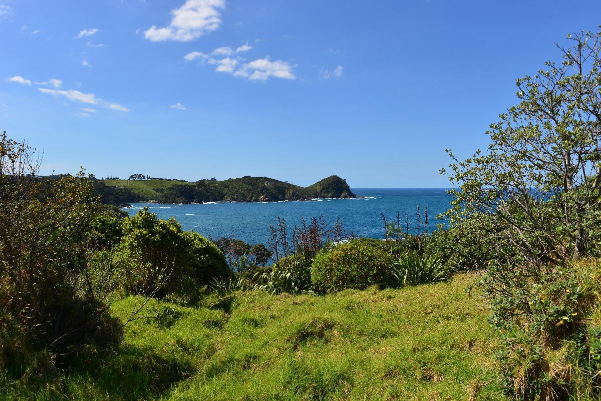 newzealand_2_0191
