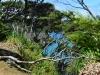 newzealand_2_0131