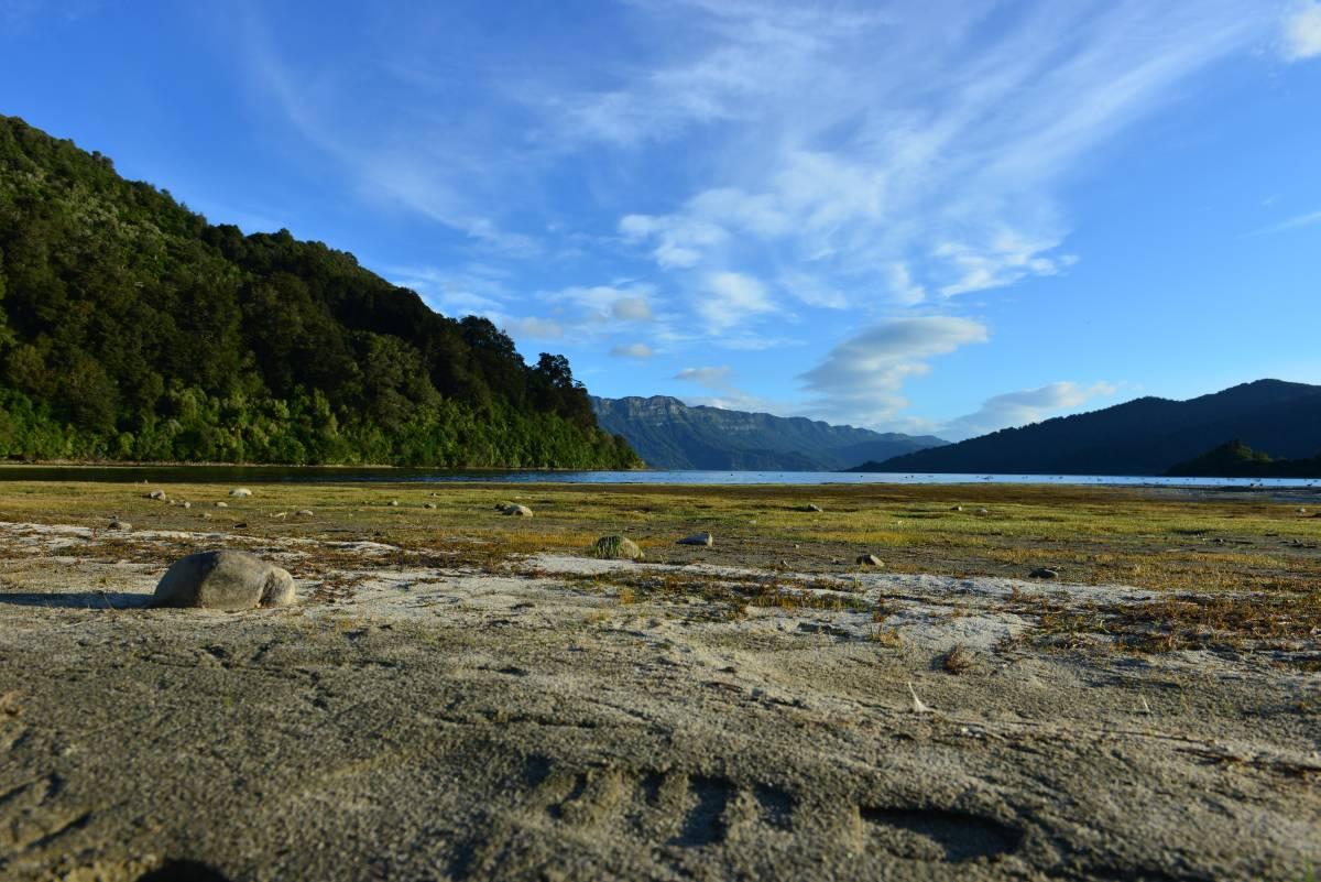 newzealand_LAKE_WAIKAREMOANA_0056
