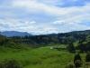 newzealand_LAKE_WAIKAREMOANA_0021