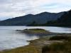 newzealand_LAKE_WAIKAREMOANA_0036