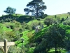 newzealand_matamata_hobbiton_0011