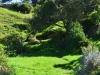 newzealand_matamata_hobbiton_0066
