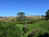 newzealand_matamata_hobbiton_0076
