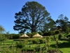 newzealand_matamata_hobbiton_0136