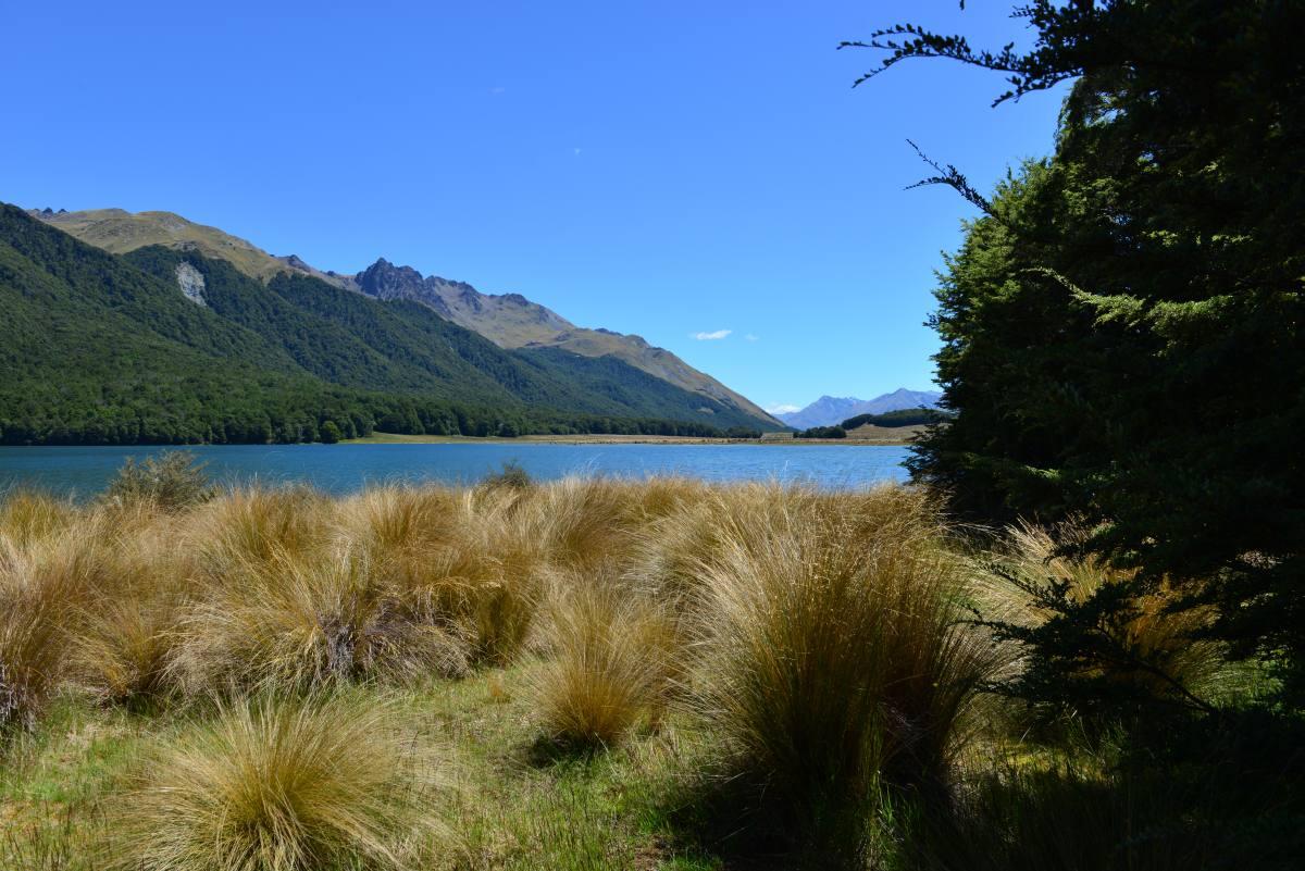 newzealand_mavora_lake_0021