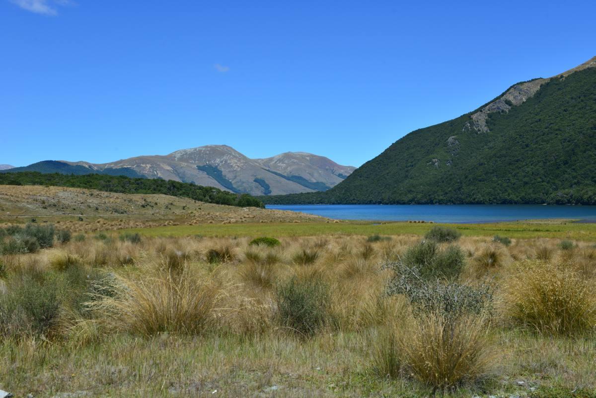 newzealand_mavora_lake_0036