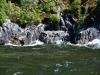 newzealand_milford_sound_0051