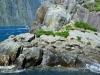 newzealand_milford_sound_0061