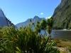 newzealand_milford_sound_0151
