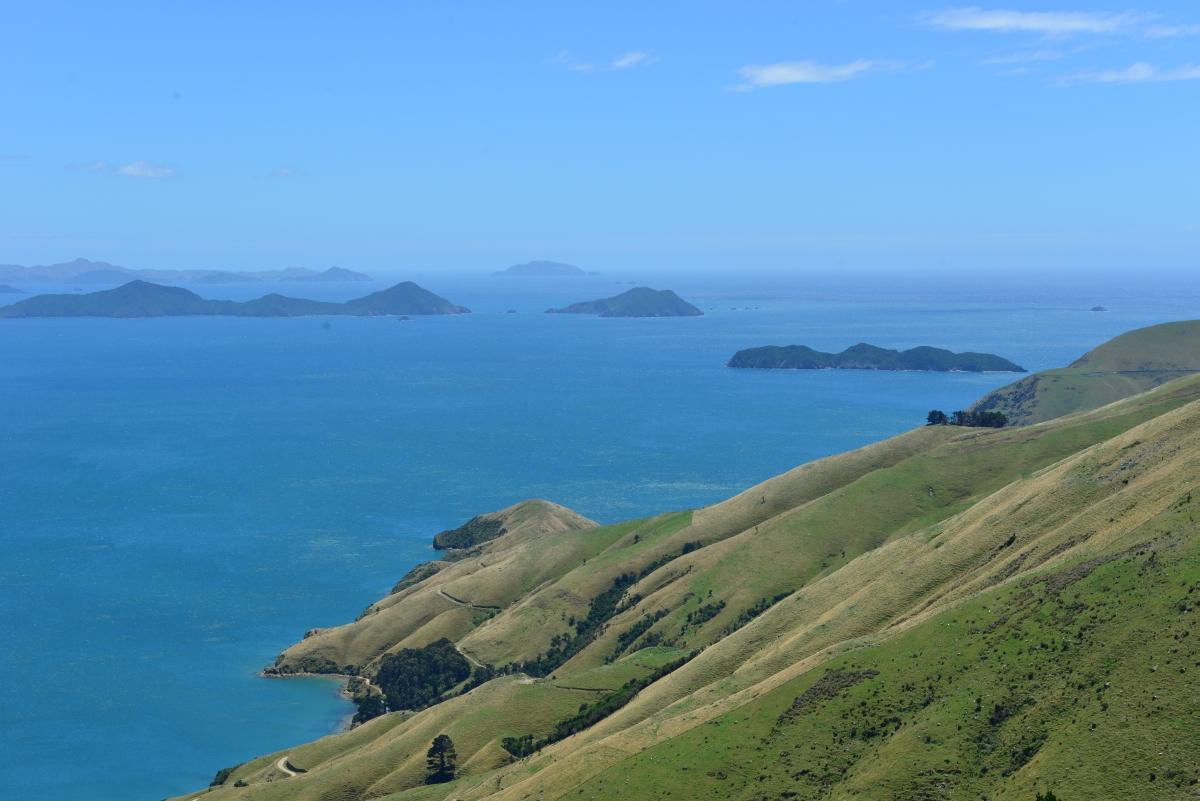 newzealand_titirangi_0011