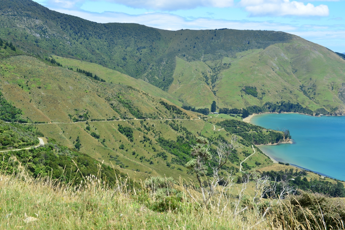 newzealand_titirangi_0016