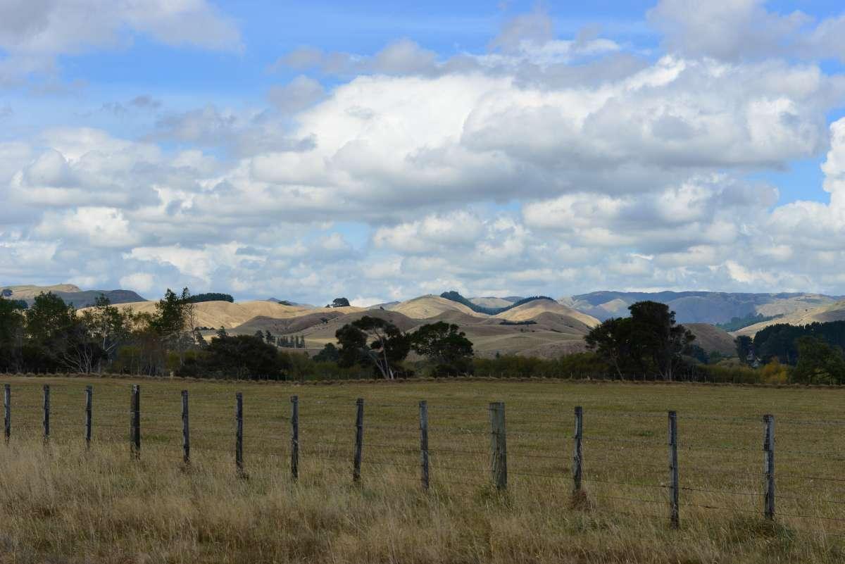 newzealand_north_island_0061