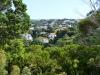 newzealand_north_island_0021
