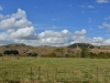 newzealand_north_island_0056