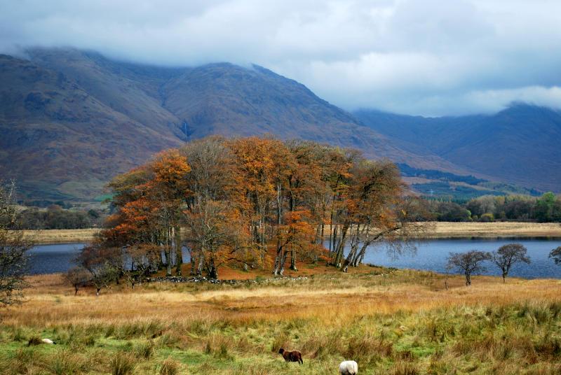 scotland_2009_057