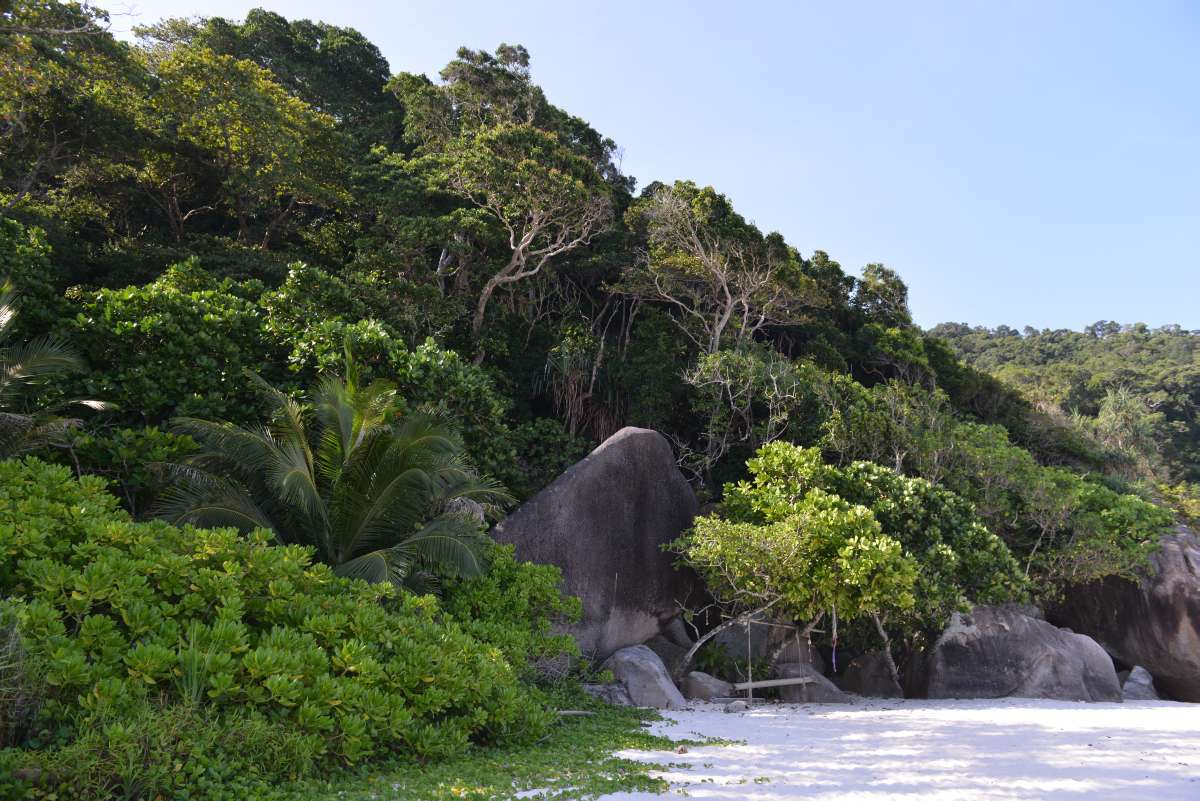 similan_island_0061