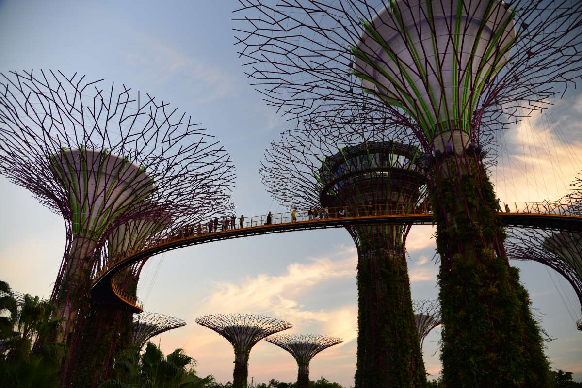 singapore_garden_by_the_bay_0001