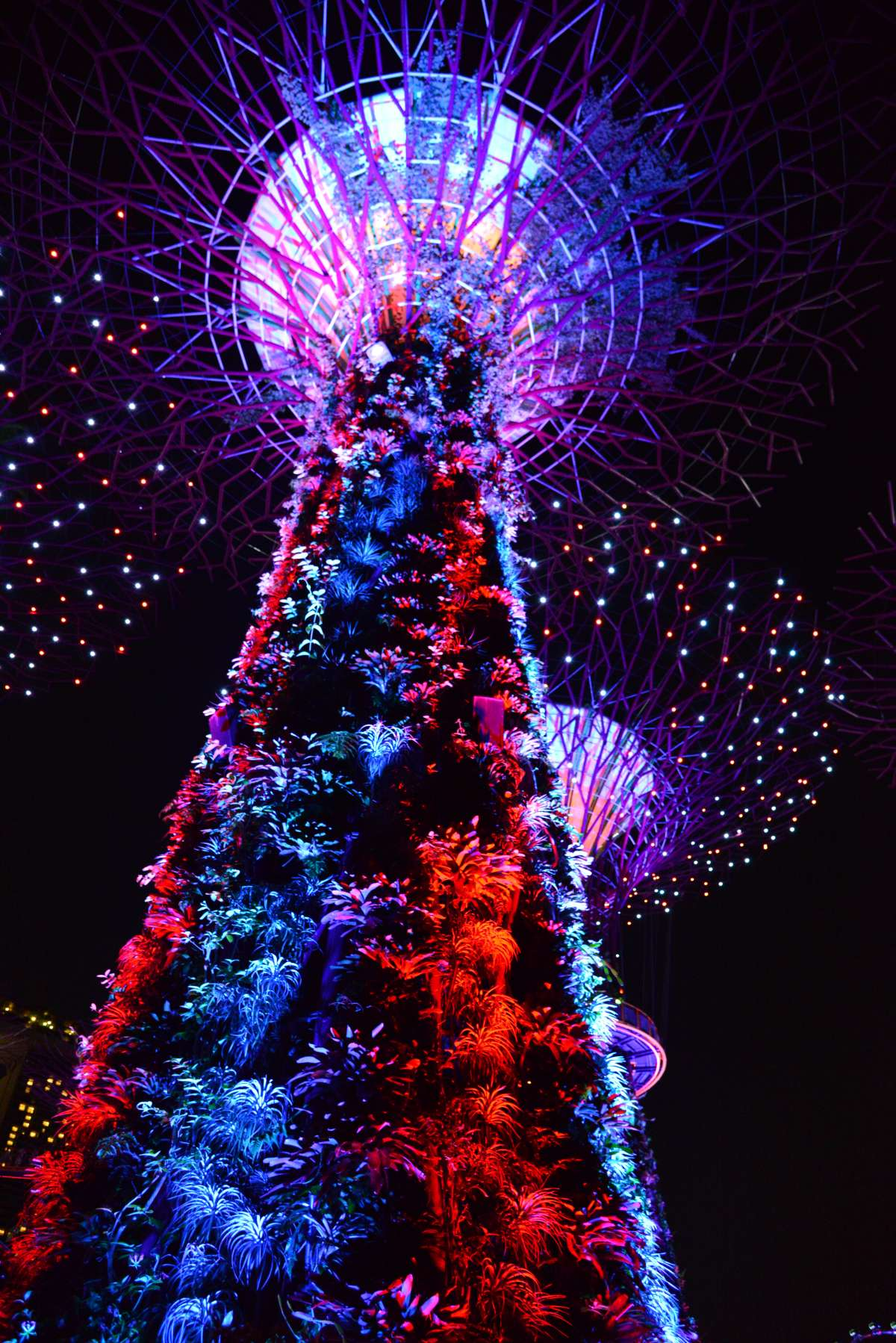singapore_garden_by_the_bay_0011