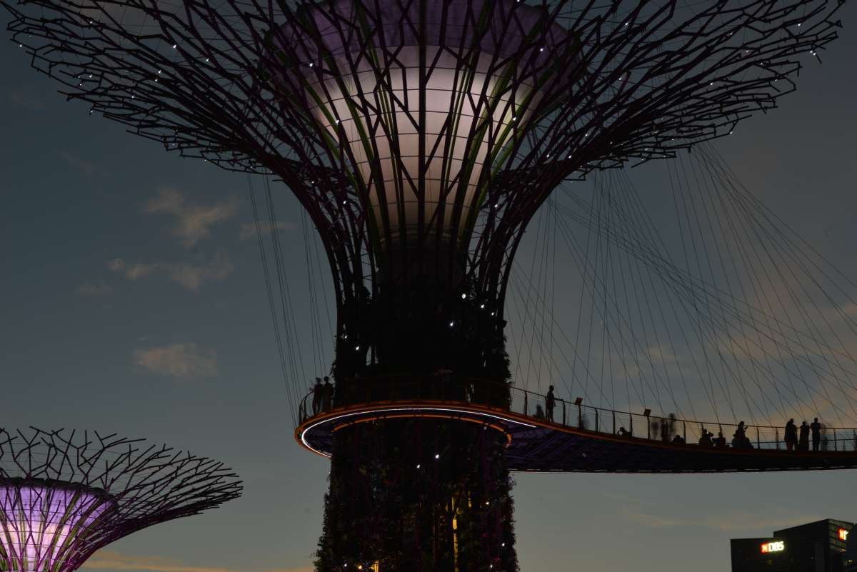 singapore_garden_by_the_bay_0026