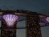 singapore_garden_by_the_bay_0021