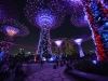 singapore_garden_by_the_bay_0036
