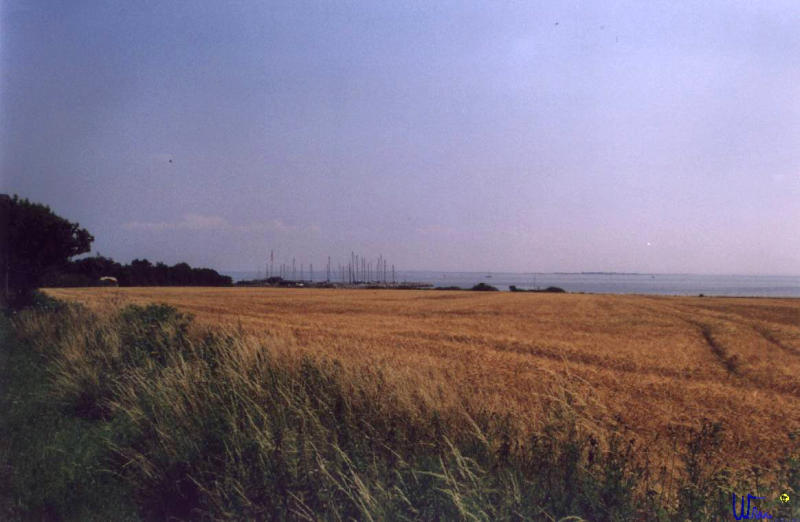 sommer2003_076