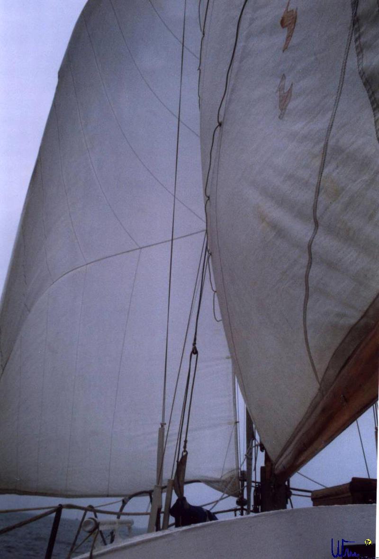 sommer2003_102