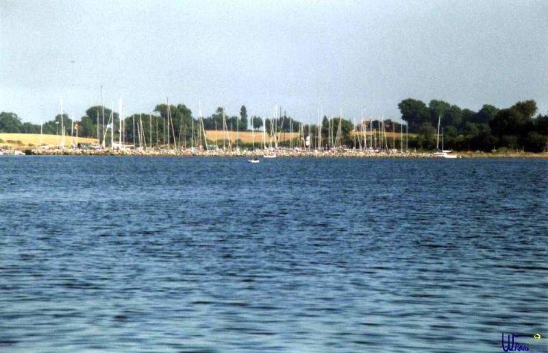 sommer2003_109
