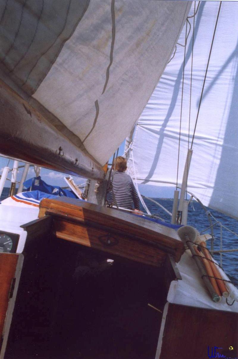 sommer2003_113