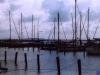 sommer2003_021